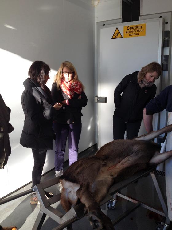 Sainsbury Team visit Highland Game